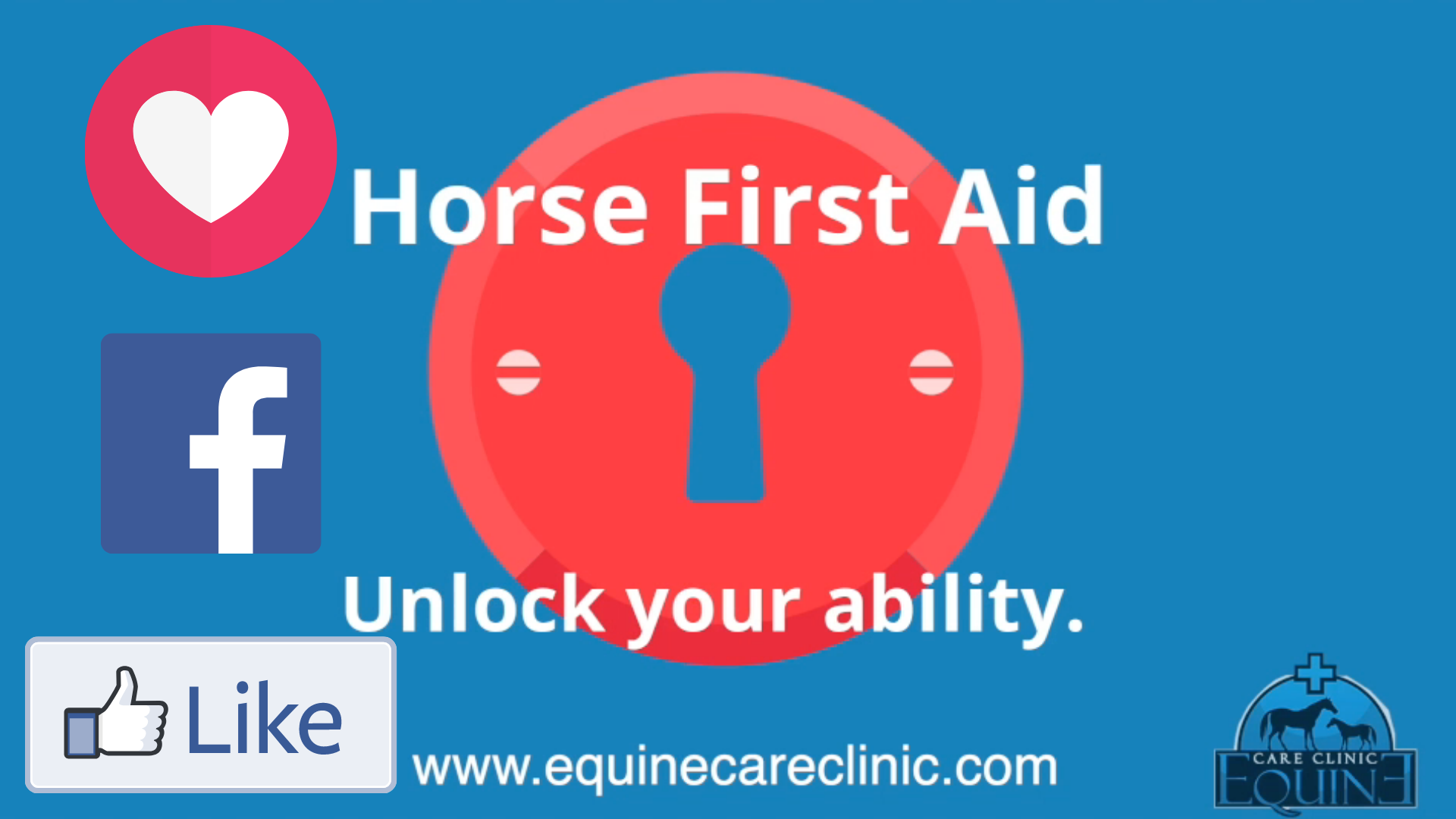 Horse First Aid Group